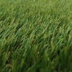 Stratford Artificial Grass Quickgrass Soft Touch
