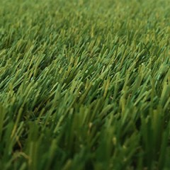 posh-grass