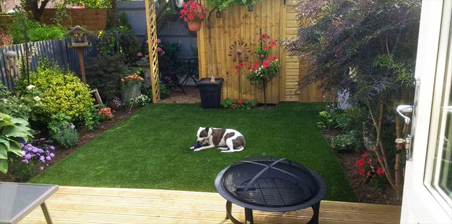 Artificial Grass After Pics