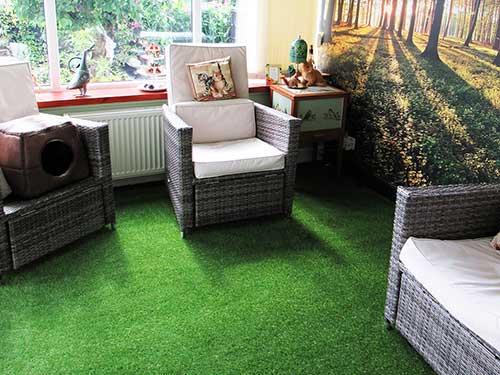 Conservatory Grass
